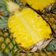 ananas proprieta