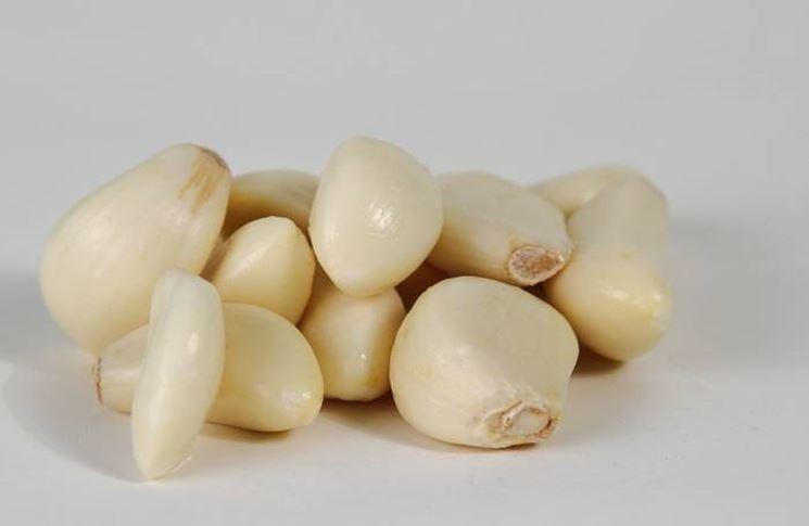 spicchi aglio