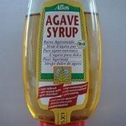 succo agave