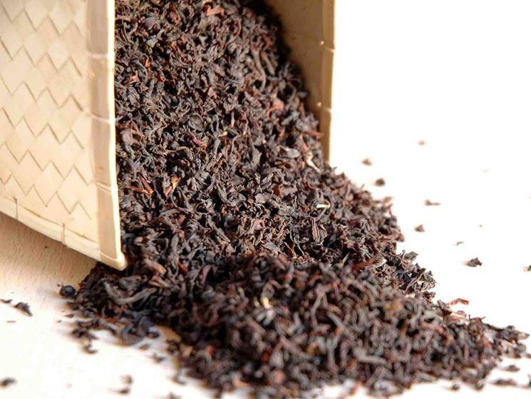 erbe per tisana anticellulite