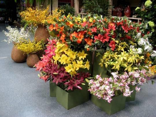 Fiori artificiali composizione di fiori finti for Fiori artificiali