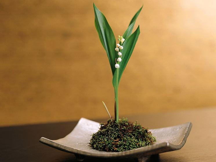 arte floreale giapponese