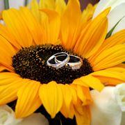 fiori per matrimonio settembre