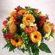fiori di agosto