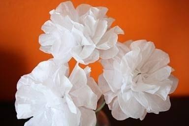 creare fiori di carta