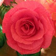 fiori di carta istruzioni