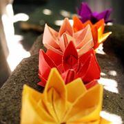 fiori di carta origami