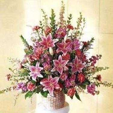 fiori<p />