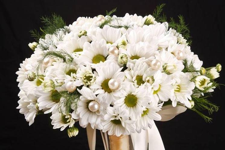 mazzo di fiori margherite
