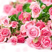 immagini mazzi di fiori