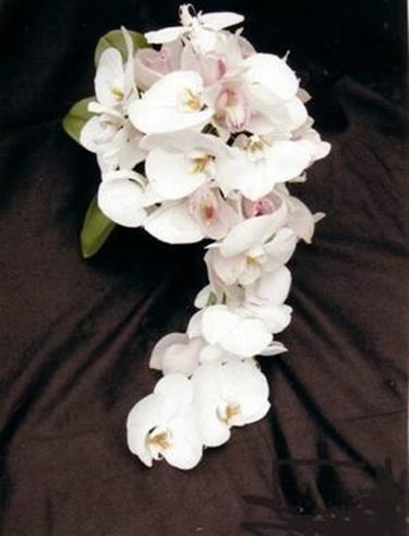 bouquet orchidee