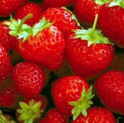 Ordine frutta e verdura Mengozzi-Scade Mercoledì 13 Maggio ore 12-Consegna in Riunione 1