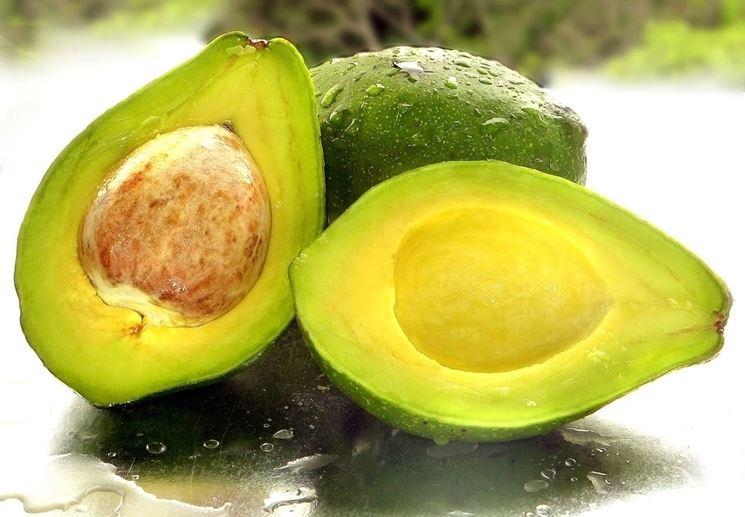 frutti avocado