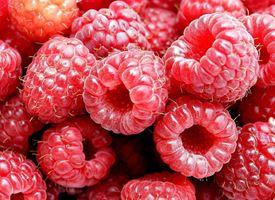 Lampone  -  Rubus idaeus