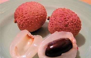 Lici, Dattero cinese  -  Litchi chinensis