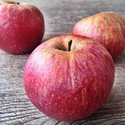 alberi di mele