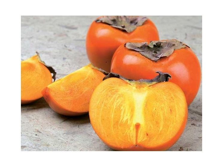 frutti kaki