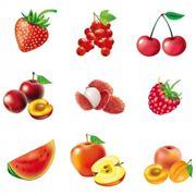 Il vero nome dei frutti