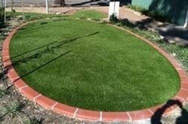 Erba giardino gialla domande e risposte giardinaggio - Quando seminare erba giardino ...