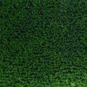 Prezzo posa prato sintetico domande e risposte giardinaggio - Quando seminare erba giardino ...