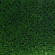 giardino sintetico