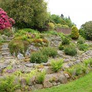 Come creare un giardino giapponese giardini orientali - Costruire giardino roccioso ...