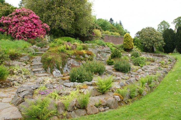 Come costruire un giardino roccioso giardini orientali for Piante da giardino roccioso