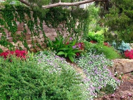 Come costruire un giardino roccioso giardini orientali - Idee giardino in pendenza ...
