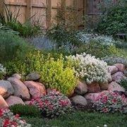 Creare giardino roccioso giardino fai da te - Costruire giardino roccioso ...