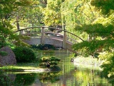 Giardini orientali giardini orientali for Giardino orientale