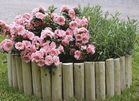Giardinaggio - Bordure giardino fai da te ...