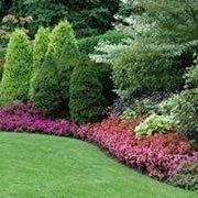 Idee per realizzare un giardino giardino fai da te for Bordi per aiuole fai da te