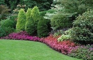 Come creare un bel giardino amicopolis social network - Creare un giardino fai da te ...