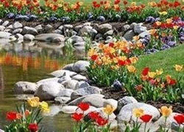Come creare un giardino roccioso giardino fai da te for Bordi per aiuole fai da te