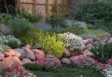 come creare un giardino roccioso - Giardino fai da te