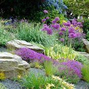 Come fare un giardino roccioso giardino fai da te - Costruire giardino roccioso ...