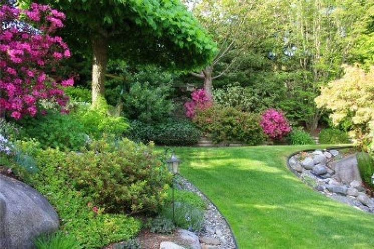 Come realizzare un giardino giardino fai da te - Idee piante da giardino ...
