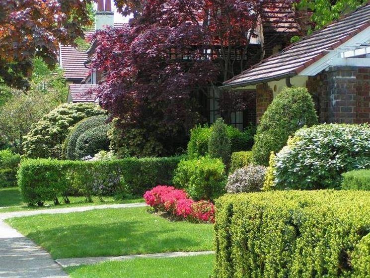 Costruire un giardino giardino fai da te - Costruire un giardino ...