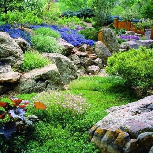 Creare giardino roccioso giardino fai da te for Rock garden designs shade