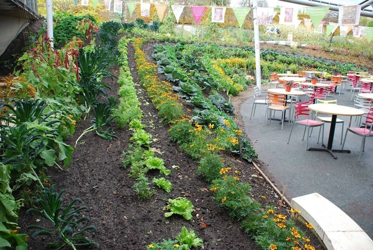 Creare giardino giardino fai da te - Il sole nel giardino ...