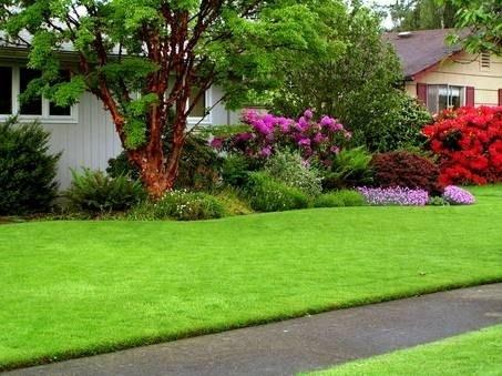 fare il giardino - giardino fai da te - Come Rendere Bello Il Giardino