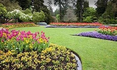 fare un bel giardino - giardino fai da te