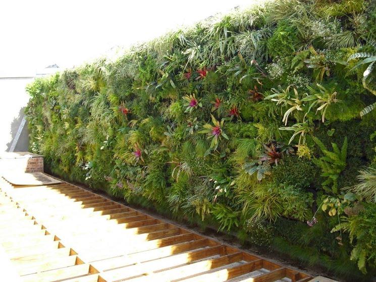 Giardini verticali giardino fai da te - Giardino verticale fai da te ...