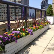 terrazza fiorita aprile