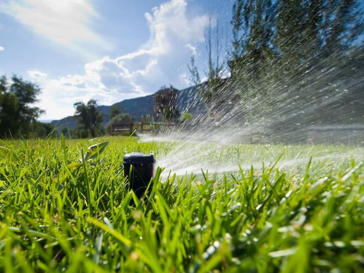 irrigazione prato