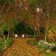 giardino novembre