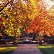 giardino ottobre