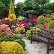 giardino giugno