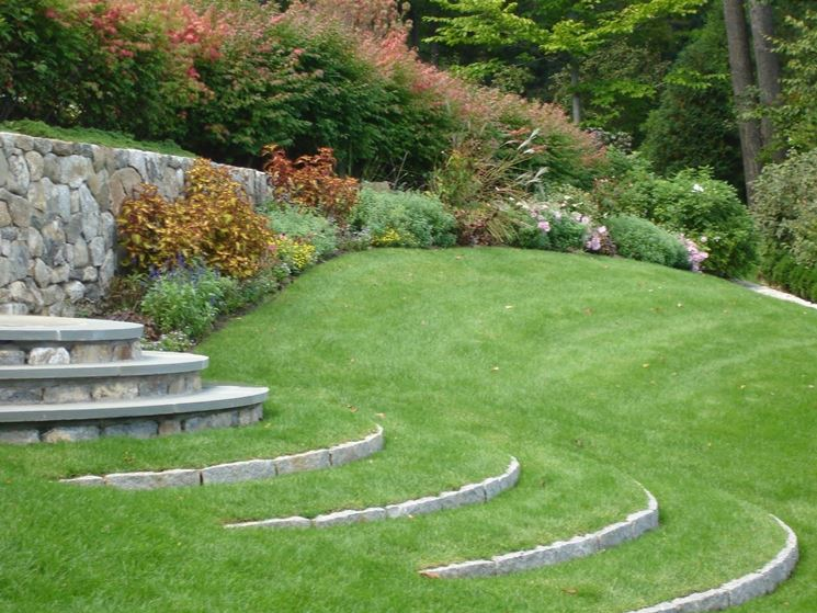 Erba giardino prato - Idee giardino senza erba ...