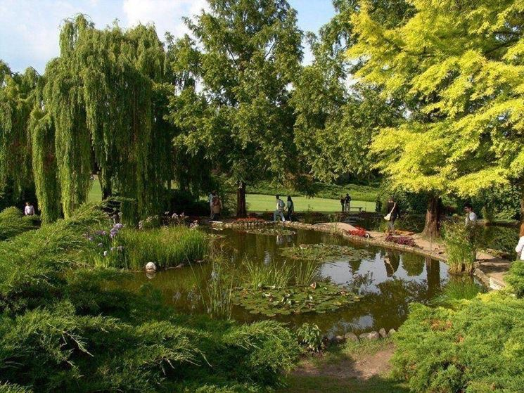 Giardino d'Autore di Villa Medicea di Castello